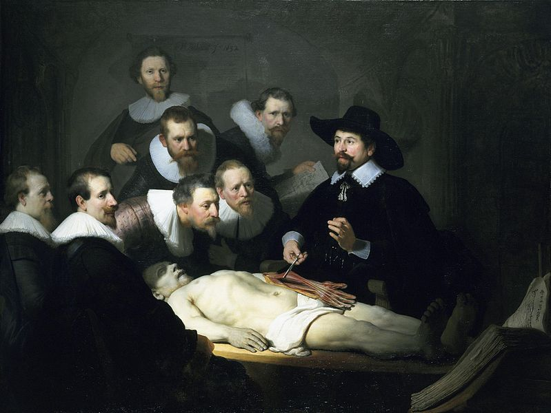 The Anatomy Lesson Of Doctor Tulp By Rembrandt My Daily Art Display