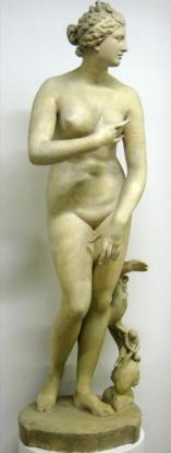 Venus Pudica