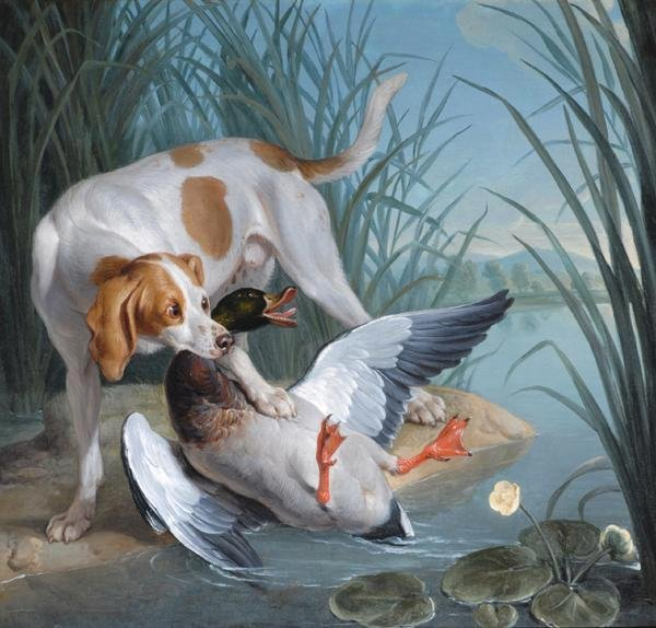 Dog and Wild Duck by Alexandre-François Desportes   (c. 1720)