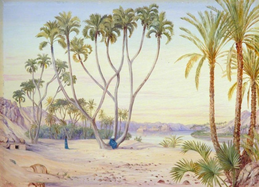 Doum and Date Palms on the Nile above Philae, Egypt by Marianne North (c. 1880)