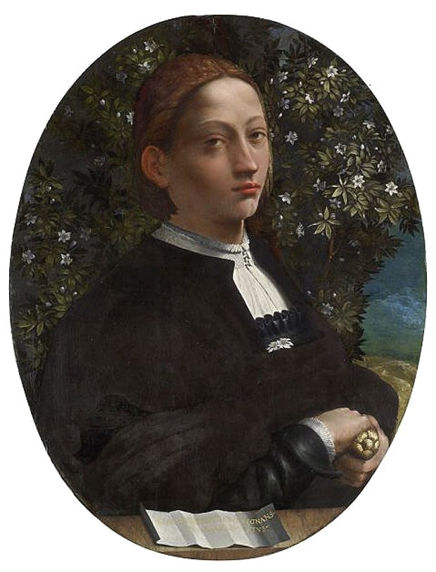 Portrait of a Young Man by Dosso Dossi