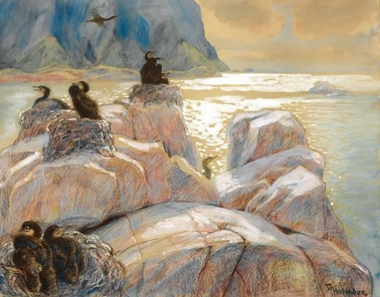 Hekkende skarv (Nesting Cormorants) by Thorolf Holmbloe