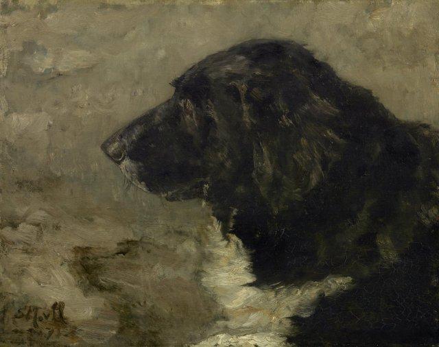 Head of a Dog by Sientje van Houten (1875)