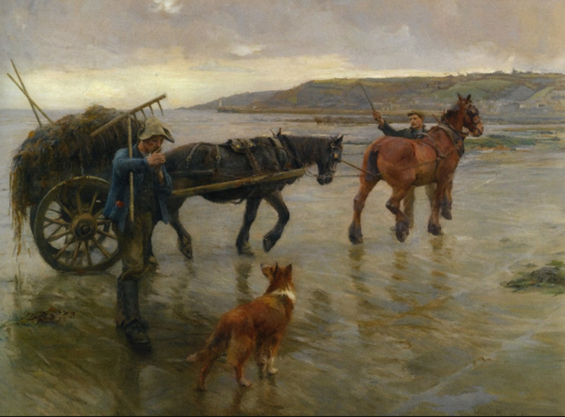 The Seaweed Gatherers by Harold Harvey